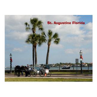 Postal caballo y carro St Augustine la Florida