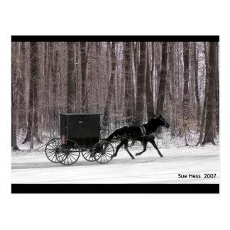 Postal Caballo y cochecillo de Amish