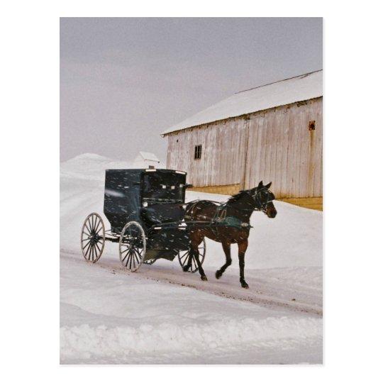 Postal Caballo y cochecillo de Amish en la Camino-Postal