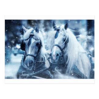 Postal caballos