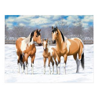 Postal Caballos de la pintura del ante en nieve