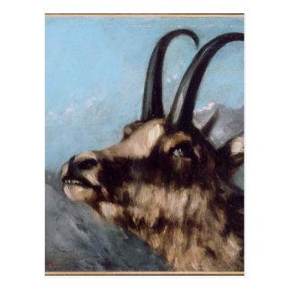 Postal Cabeza del Gazelle de Gustave Courbet