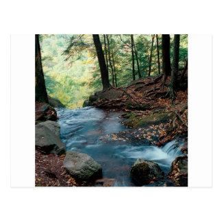 Postal Caídas Delaware del suero del agua