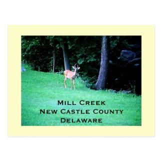 Postal Cala del molino, el condado de New Castle,