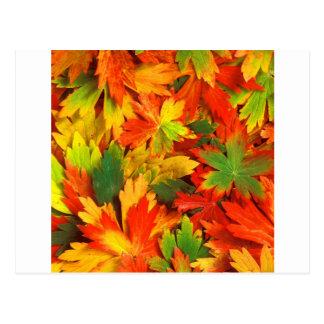 Postal Caleidoscopio del otoño de