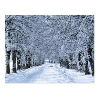 Postal Callejón del invierno