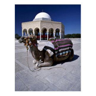 Postal Camello que descansa delante de la bóveda,