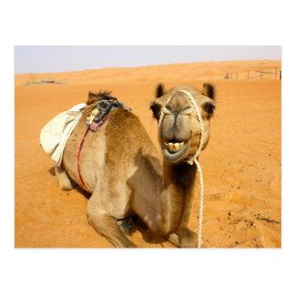 Postal Camello sonriente divertido