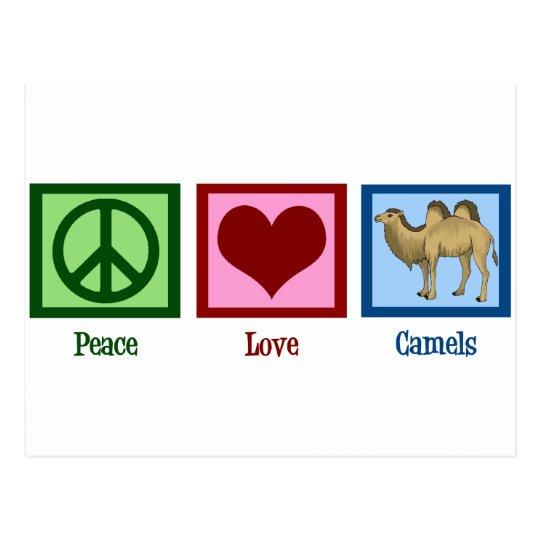 Postal Camellos del amor de la paz