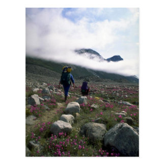 Postal Caminantes en el parque nacional de Auyuittuq,