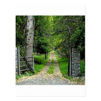 Postal Camino forestal al jardín encantado