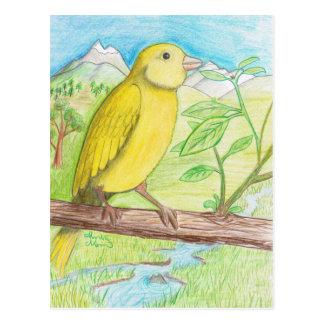 Postal Canario amarillo en el prado
