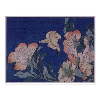 Postal Canario y Peony de Katsushika Hokusai