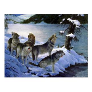 Postal Canción del lobo, lobos