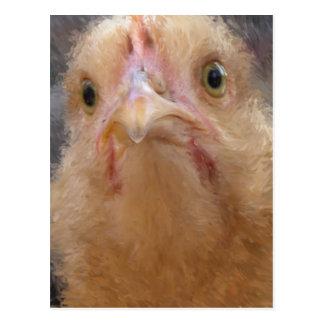 Postal Cara del pollo