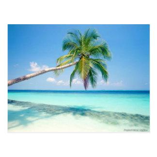 postal caribean de la playa