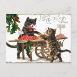 Postal cariñosa de los deseos del navidad del gato