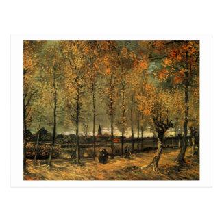 Postal Carril con los álamos, Vincent van Gogh