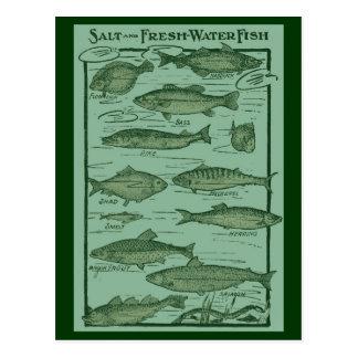 Postal Carta de los pescados de la sal y de agua dulce