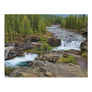 Postal Cascada en las montañas rocosas canadienses