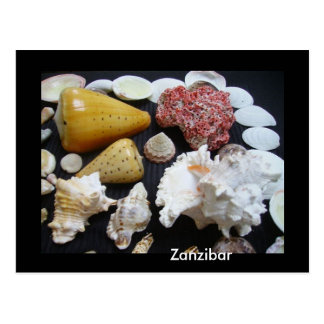 Postal Cáscaras de Zanzíbar