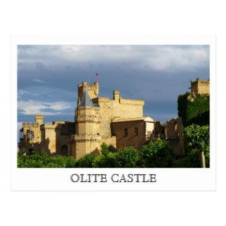 Postal Castillo de Olite