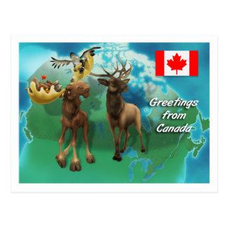 Postal Castor y ganso canadienses de los alces de los