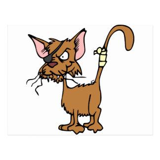Postal cat-47896.png