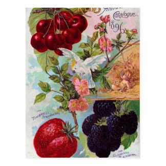 Postal Catálogo anual 1896 de la fruta