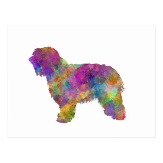 Postal Catalonian sheepdog in watercolor