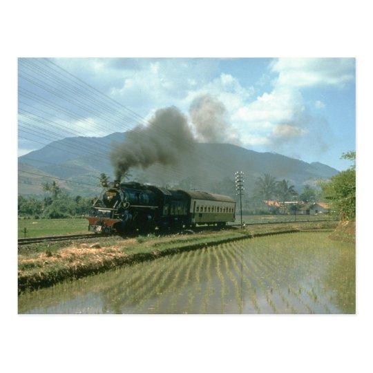 Postal CC5003 pasa campos de arroz con su carga ligera