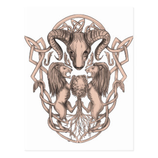 Postal Celtic Knotwo del escudo de armas del árbol del