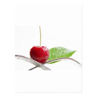 Postal Cerezas frescas rojas gourmet hechizo