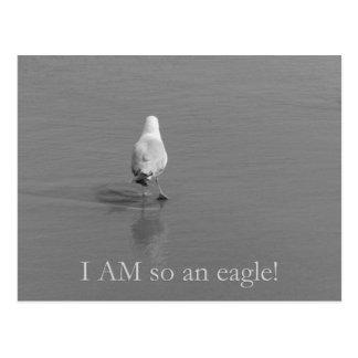 Postal ¡Charlie la gaviota sola - soy tan un águila!