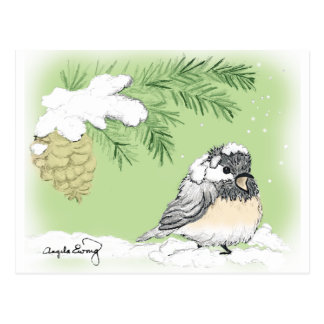 Postal Chickadee frío
