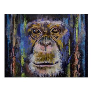 Postal Chimpancé