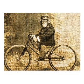 Postal Chimpancé del vintage en una bicicleta