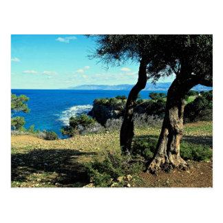 Postal Chipre