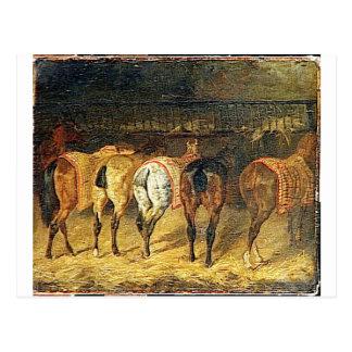 Postal Cinco caballos vistos de detrás con los croupes