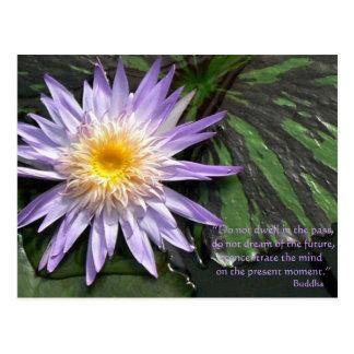 Postal Cita púrpura de Waterlily Buda