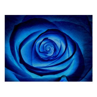 Postal color de rosa azul