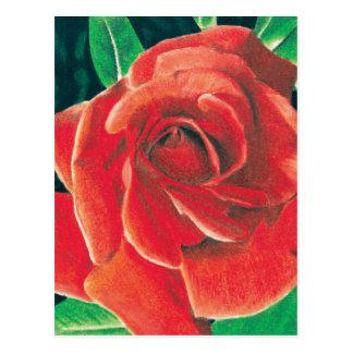 Postal color de rosa de Jacob Grimm