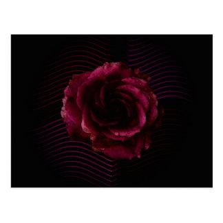 Postal Color de rosa oscuro