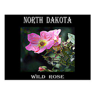 Postal Color de rosa salvaje de Dakota del Norte