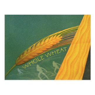 Postal Comidas sanas del vintage, pan entero del trigo