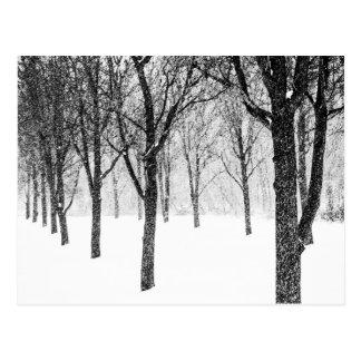 Postal como echo a un lado con los árboles