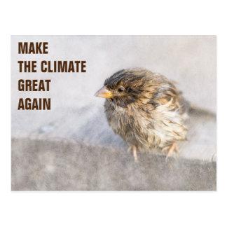 Postal Conciencia del cambio de clima