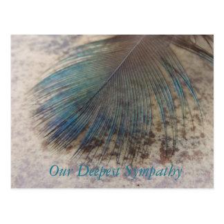 Postal Condolencia, pluma de pájaro colorida del pavo