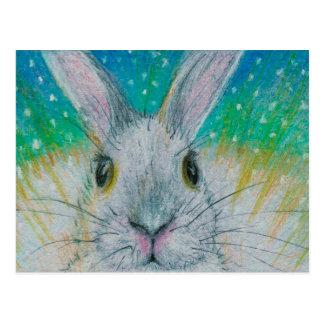 Postal ¡Conejo blanco en la nieve!