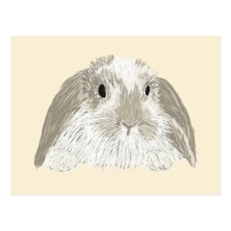 Postal Conejo de conejito
